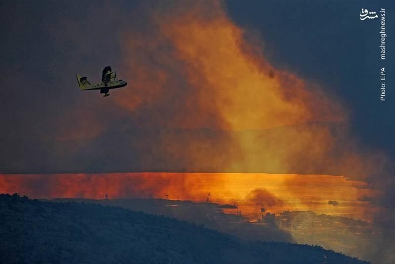 آتش سوزی در سواحل آدریاتیک کرواسی