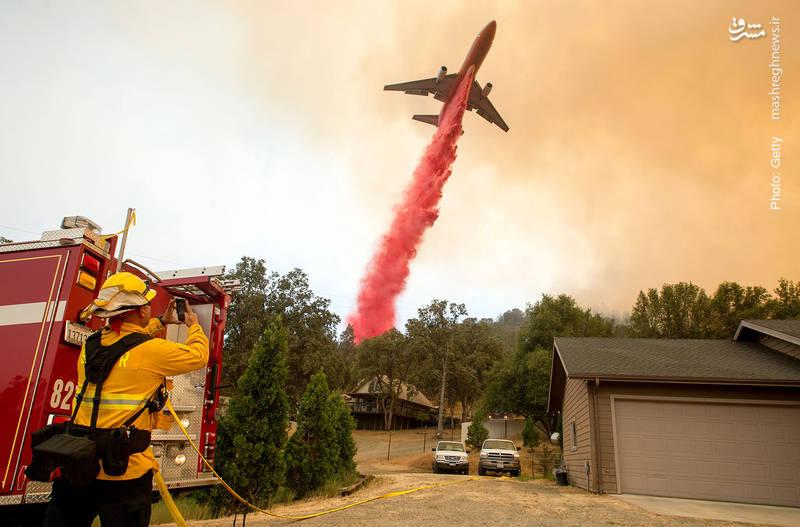 استفاده از مخزن هوایی برای خاموش کردن شعلهها در جنگل کالیفرنیا