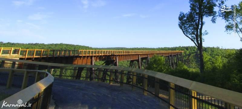 ۱۰- پل کینزوآ   آمریکا  پل کینزوآ (Kinzua bridge) در اصل برای حمل ذغال ساخته شده و در جنگل ملی الگینی (Allegheny National Forest) قرار دارد. اما در حال حاضر به عنوان یک جاذبه ی گردشگری می درخشد و نمایی زیبا از تمامی جنگل را به بازدید کنندگان هدیه می دهد