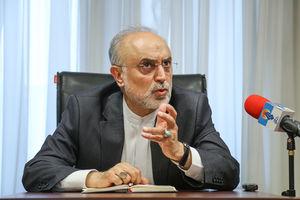 صالحی در بوشهر: ۱۵ نوع سانتریفیوژ نسل جدید در نطنز مشغول بهکار است