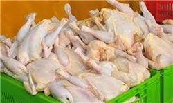 کاهش قیمت مرغ تا هفته آینده