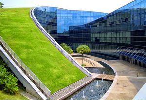عکس/ دانشگاه تکنولوژی نانیانگ سنگاپور