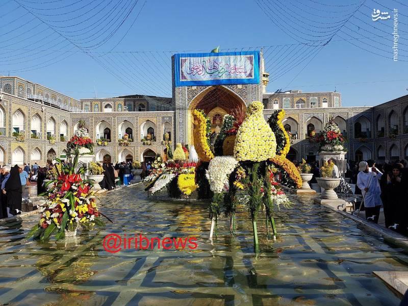 عکس/ گلهای صحن آزادی حرم حضرت رضا (ع)
