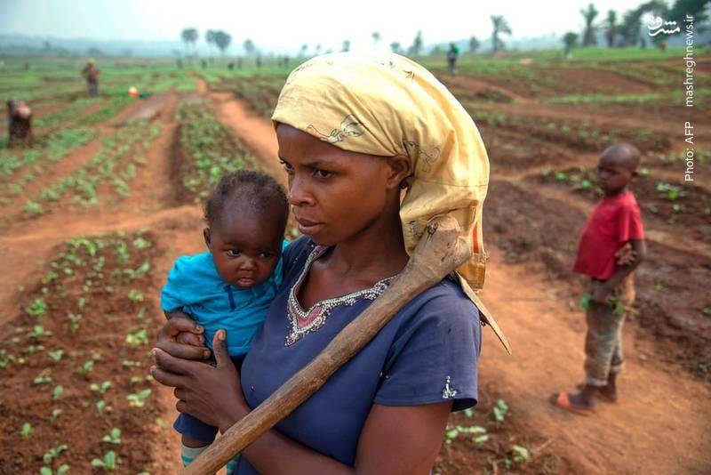 کشاورزی بخشی از 1.3 میلیون آواره در جمهوری ناآرام کنگو