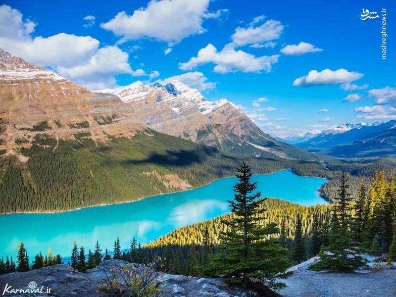 دریاچه پیتو | پارک ملی بنف/ پارک ملی بنف در  کانادا واقع شده است. این دریاچه آب فیروزه ای رنگ زیبایی دارد و کمی سخت است که باور کنید این رنگ کاملا طبیعی است. این رنگ خیره کننده مربوط به گردها و مواد یخچال های طبیعی هستند که در آب حل شده اند.
