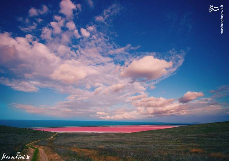 دریاچه اسپنسر | استرالیا/ شاید این دریاچه ی صورتی رنگ واقعی به نظر نرسد اما این رنگ زیبا توسط ترکیبی آلی به نام کاروتن ایجاد می شود.