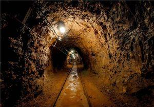 گزارش نحوه برخورد با کارگران معدن در مجلس