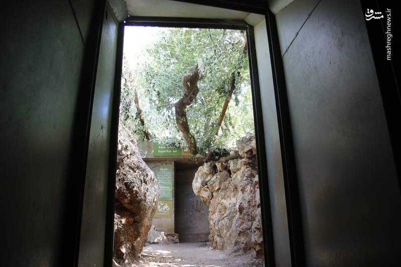 موزه جهادی «ملیتا» در جنوب لبنان