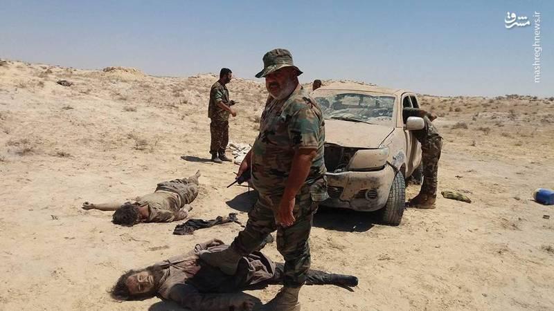 هلاکت داعشی ها در سوریه