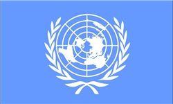 حمله به دفاتر سازمان ملل در مالی ۹ کشته بر جا گذاشت