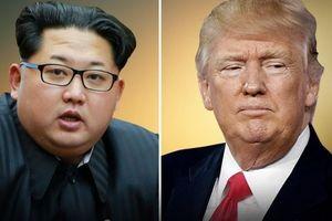 کرهشمالی: ترامپ آشغال توئیت میکند
