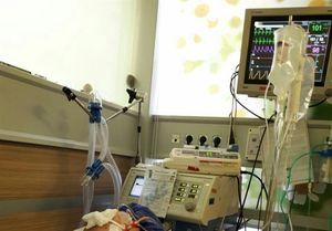 مادری که با پر کشیدنش ۶ نفر را زندگی دوباره بخشید