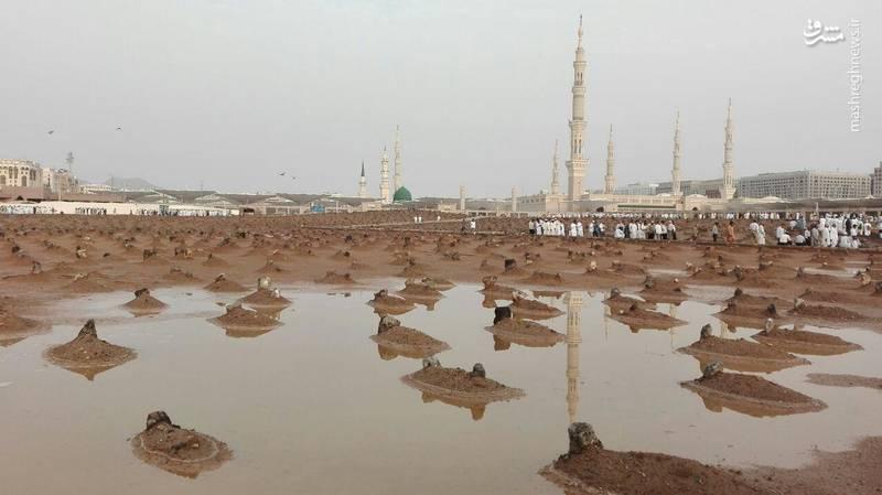 بارش باران در قبرستان بقیع/ عکس