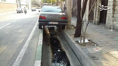 عکس/ پارک ماهرانه یک راننده ایرانی