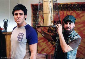 ستارهها در سینمای ایران دیگر معنا ندارند