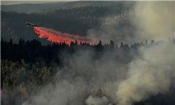 تخلیه صدها خانوار درپی آتشسوزی گسترده در جنگلهای «لس آنجلس»