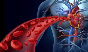 نشانه های اشکال در سیستم گردش خون کدامند؟