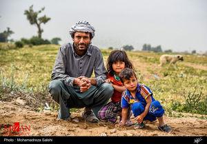 ۳ استان رکورد دار ازدواج دختران با مردان خارجی