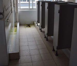 فیلم/ توالتی که ساختش 7 سال طول کشید!