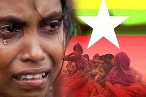 نسل کشی مسلمانان در میانمار