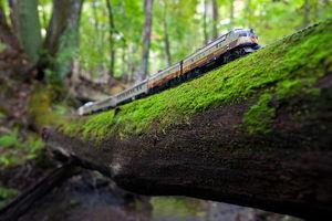 عکس/ سفر با قطار اسباب بازی در کانادا