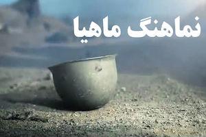 نماهنگ/ «ماهیا» با صدای محمد اصفهانی