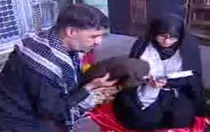 فیلم/ آماده سازی مزار شهید حججی در حضور همسرش