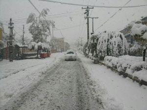 عکس/ بارش شدید برف در رینه