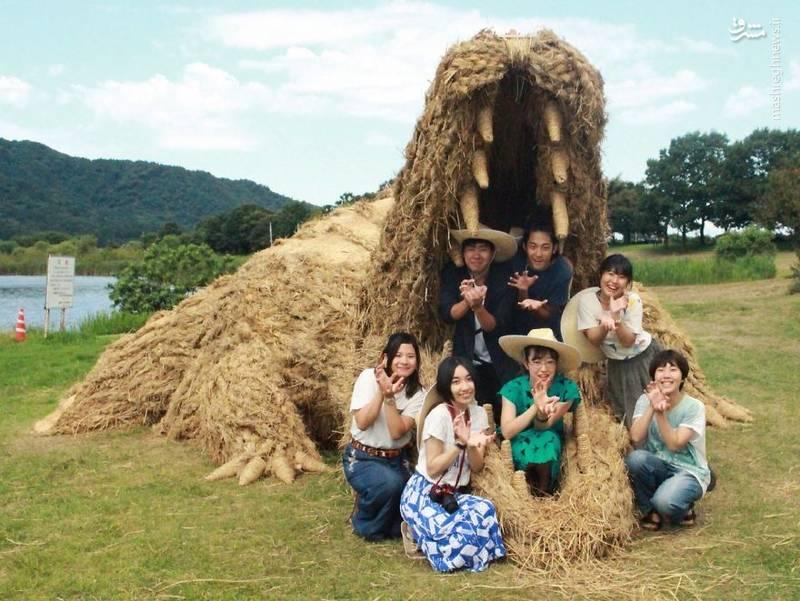 2072093 - حیوانات غول پیکر در مزارع ژاپن