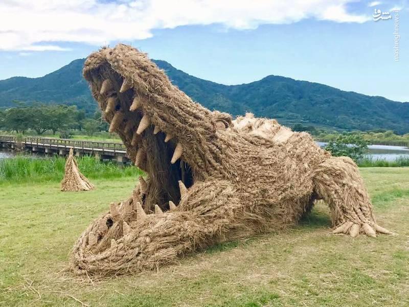 2072094 - حیوانات غول پیکر در مزارع ژاپن
