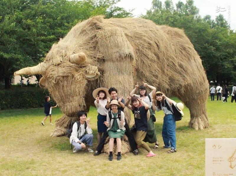 2072095 - حیوانات غول پیکر در مزارع ژاپن