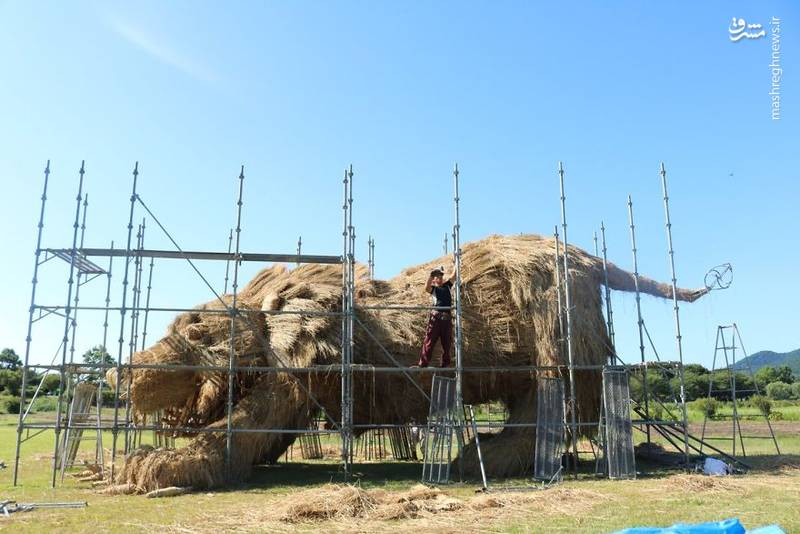 2072096 - حیوانات غول پیکر در مزارع ژاپن