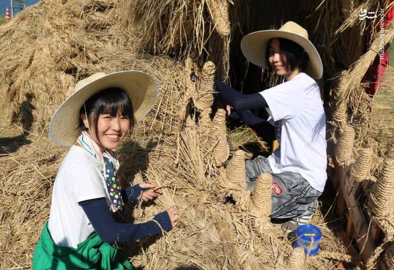 2072097 - حیوانات غول پیکر در مزارع ژاپن