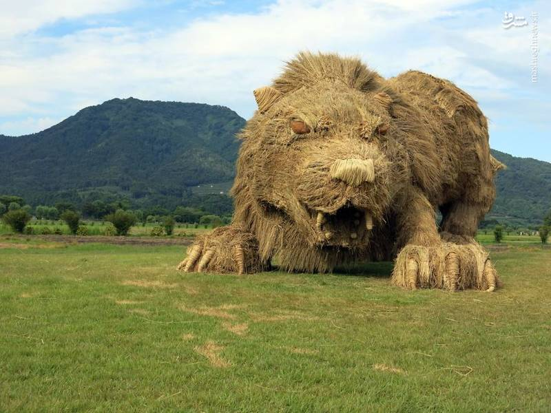 2072098 - حیوانات غول پیکر در مزارع ژاپن