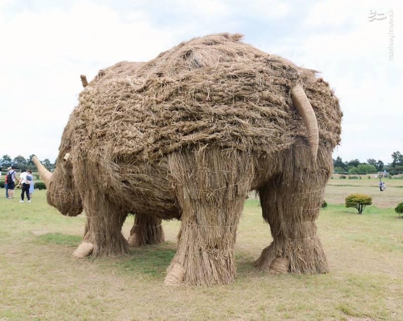 2072099 - حیوانات غول پیکر در مزارع ژاپن