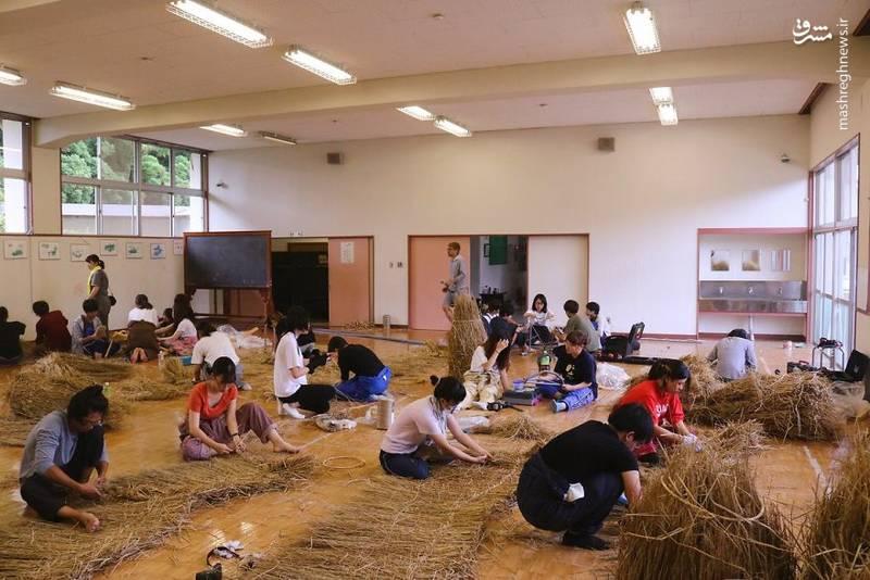 2072101 - حیوانات غول پیکر در مزارع ژاپن
