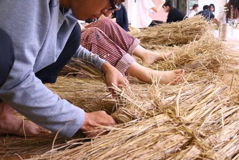 2072103 - حیوانات غول پیکر در مزارع ژاپن