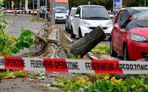 عکس/ خسارات طوفان در برلین آلمان