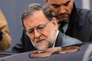 رئیس پلیس کاتالونیا برکنار شد