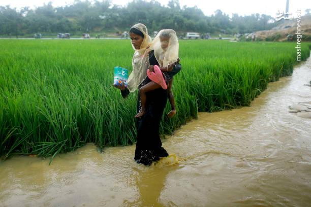 عکس/ وضعیت اسفناک مسلمان میانماری در اردوگاههای مرزی