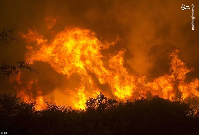 آتش سوزی گسترده در