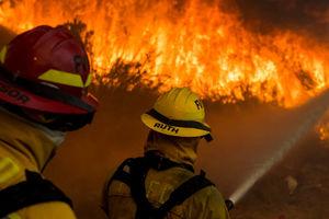 عکس/ 11کشته براقر آتش سوزی گسترده در کالفرنیا
