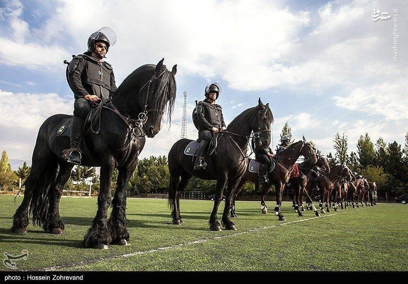 عکس/ مانور نیروهای یگان ویژه ناجا با اسب