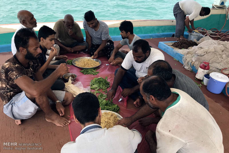 عکس/ صید ماهی و میگو در جزیره قشم