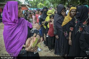 برنامه سازمانیافته میانمار برای مسلمانان روهینگیا