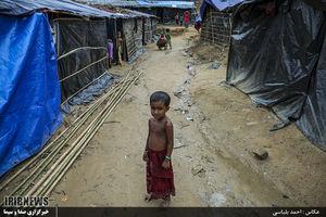 دولت میانمار بهدنبال غصب زمین مسلمانان روهینگیا