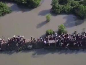 فیلم هوایی از فرار مردم روهینگیا به بنگلادش