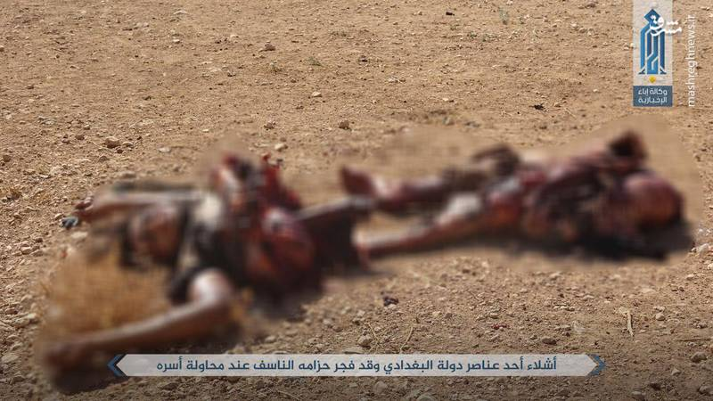 درگیری داعش و جبهه النصره در حماه