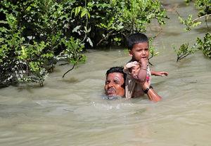 عکس/ مشکلات مسلمانان برای فرار از میانمار|2795765