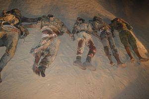 عکس/ ناکامی داعش در حمله به ارتش مصر